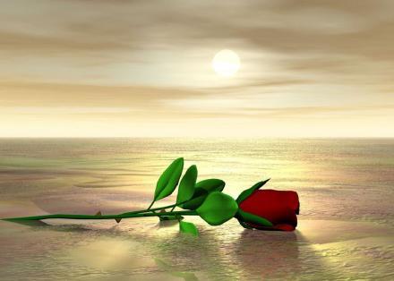 Imajenes de paisajes de amor - Imagui
