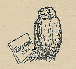 Owl illustrated by E. H. Shepard