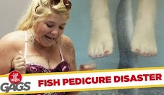 Funny Video – Crazy Fish Pedicure SCARES Clients!