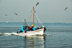 για ψάρεμα....και μας ακολουθούν οι γλάροι...