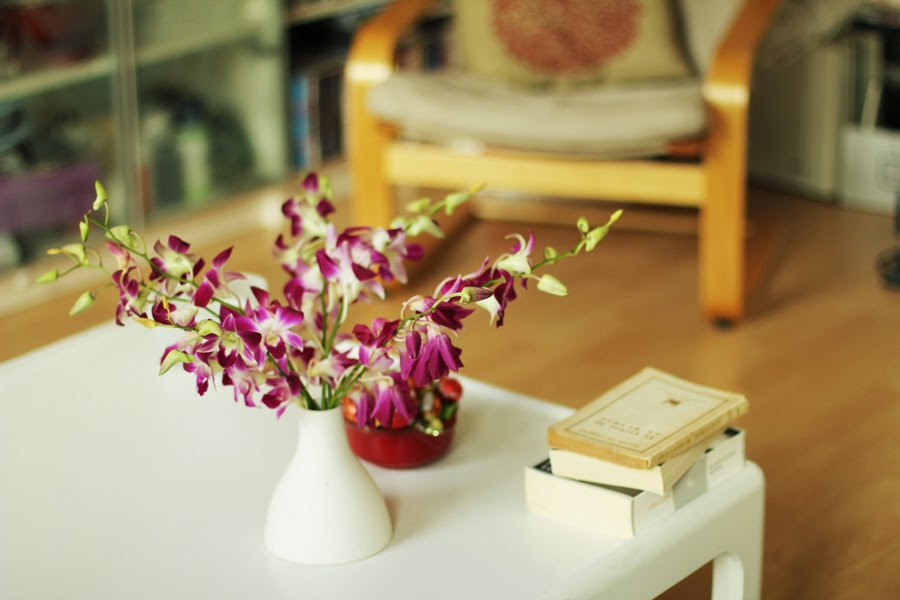blume dekoration köln airbnb myberlinfashion