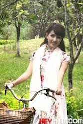 Socola Hay Hoa Hồng