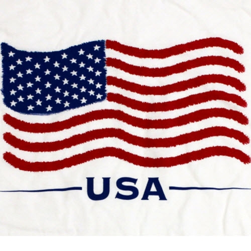 The Your Web: Usa Flag Pictures - Usa Flag - Usa National Flag - Usa ...