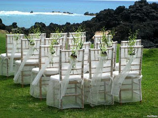 Wedding Chairs Decorated with ribbons and flowers