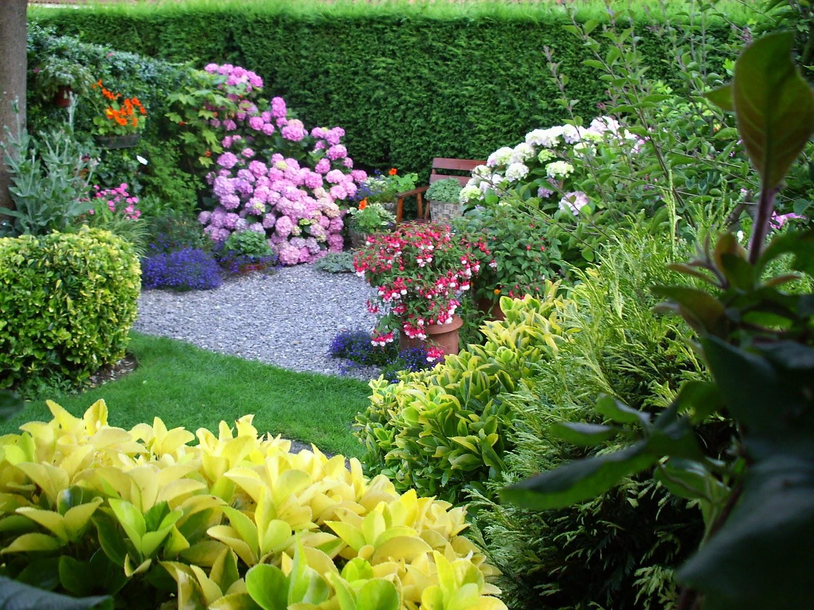 El blog de delsa primavera en el jard n for Jardines de primavera