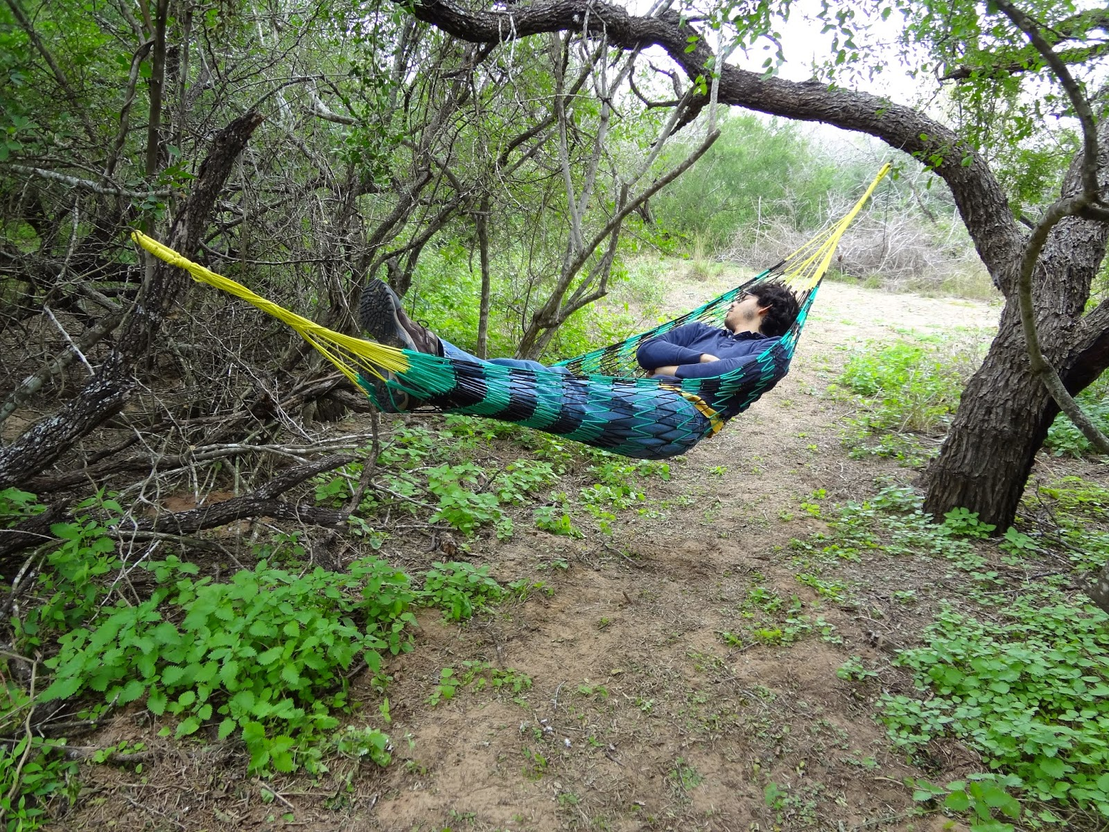 Medium image of a cool weather hammock from mexico