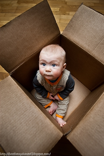 Funny baby in a box.