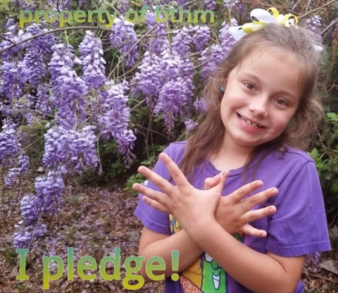 butterfly hero pledge photo