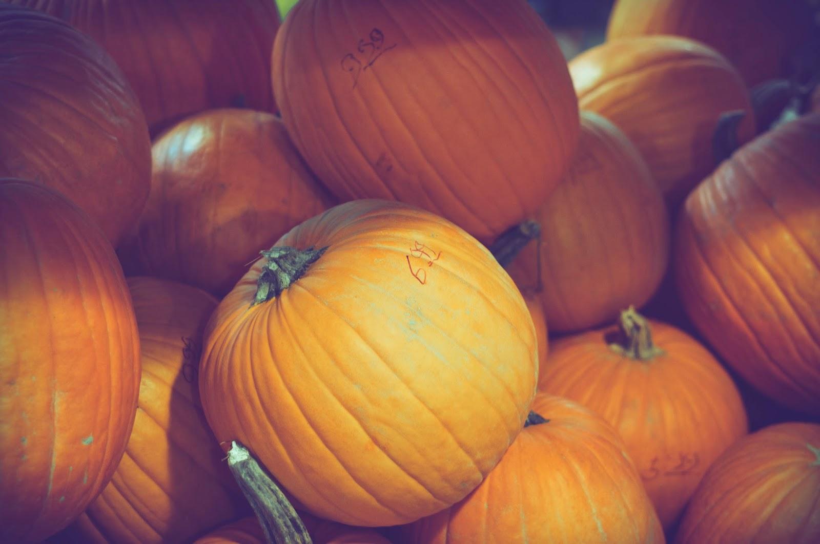 pumpkinsin granville market, vancouver