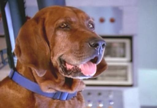 VR Troopers Jeb the Talking Dog