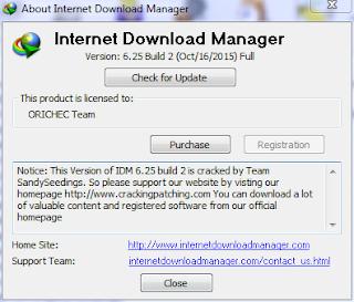 Internet Download Manager Versi 6.25 Build 2