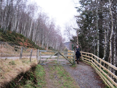 The path from Cambus o'May joins the south Deeside Road