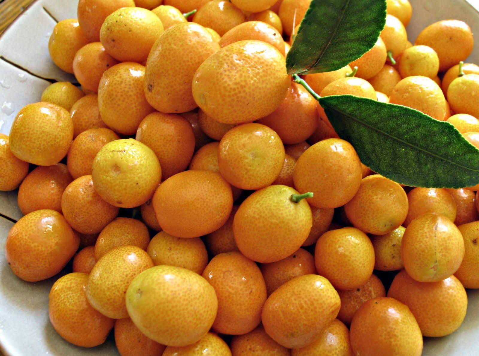 how to eat kumquat seeds