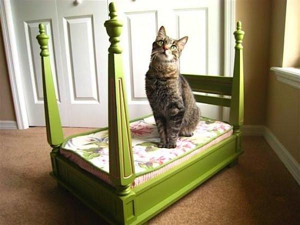 como fazer uma cama para seu pet