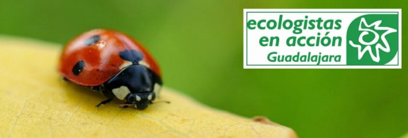 Ecologistas en Acción de Guadalajara