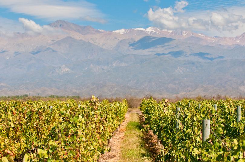 Mendoza Wine Regions