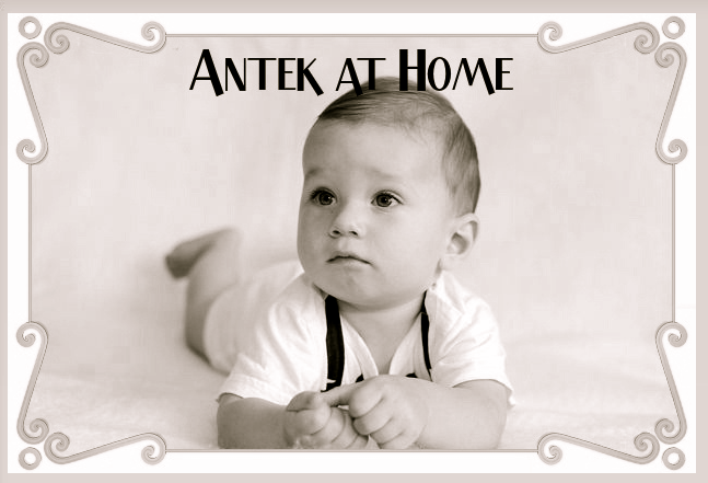 Antek at Home