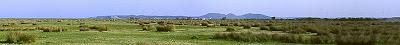 Entreu al Web dels Parcs Naturals de Catalunya