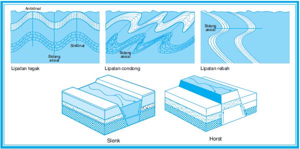 Diatropisme/Tektonisme/Tektogenesa