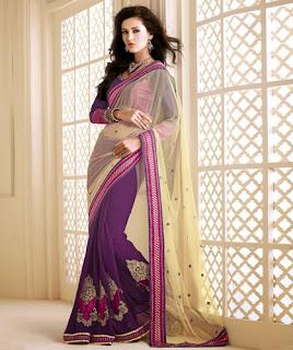 Latest Saree Blouse Design 2013-14