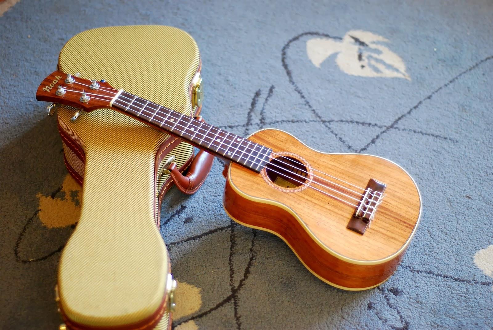 Noah mahogany concert ukulele