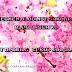 Segmen Bloglist Sakura Blog Qasehku