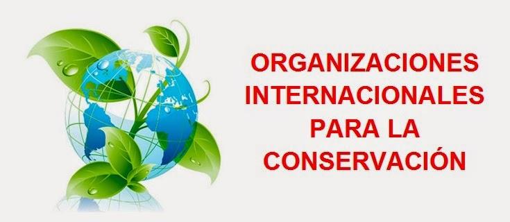 organizaciones mundiales para la conservacion ambiental