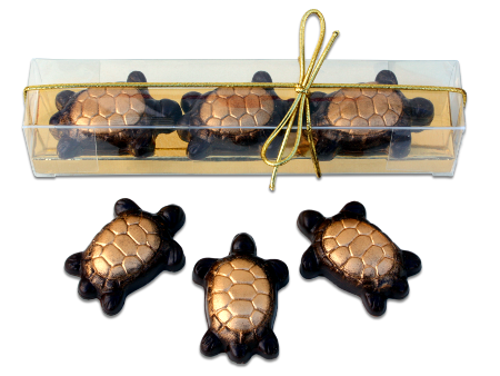 robin chocolates caramel pecan turtles