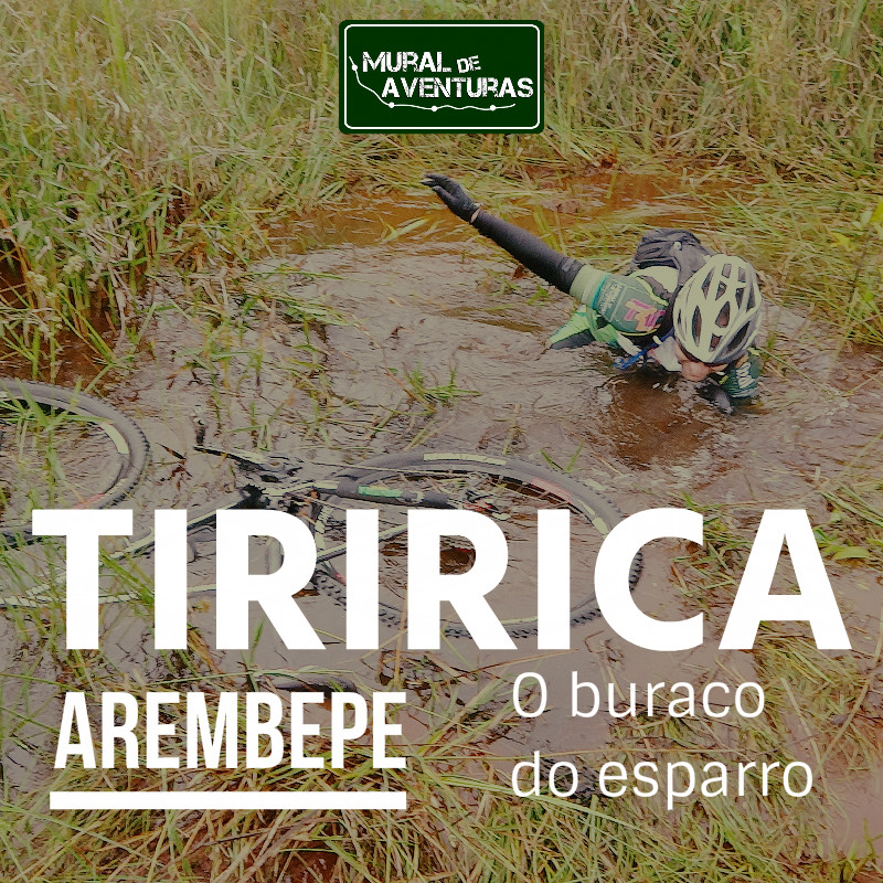 New Tiririca