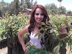Producción 2012