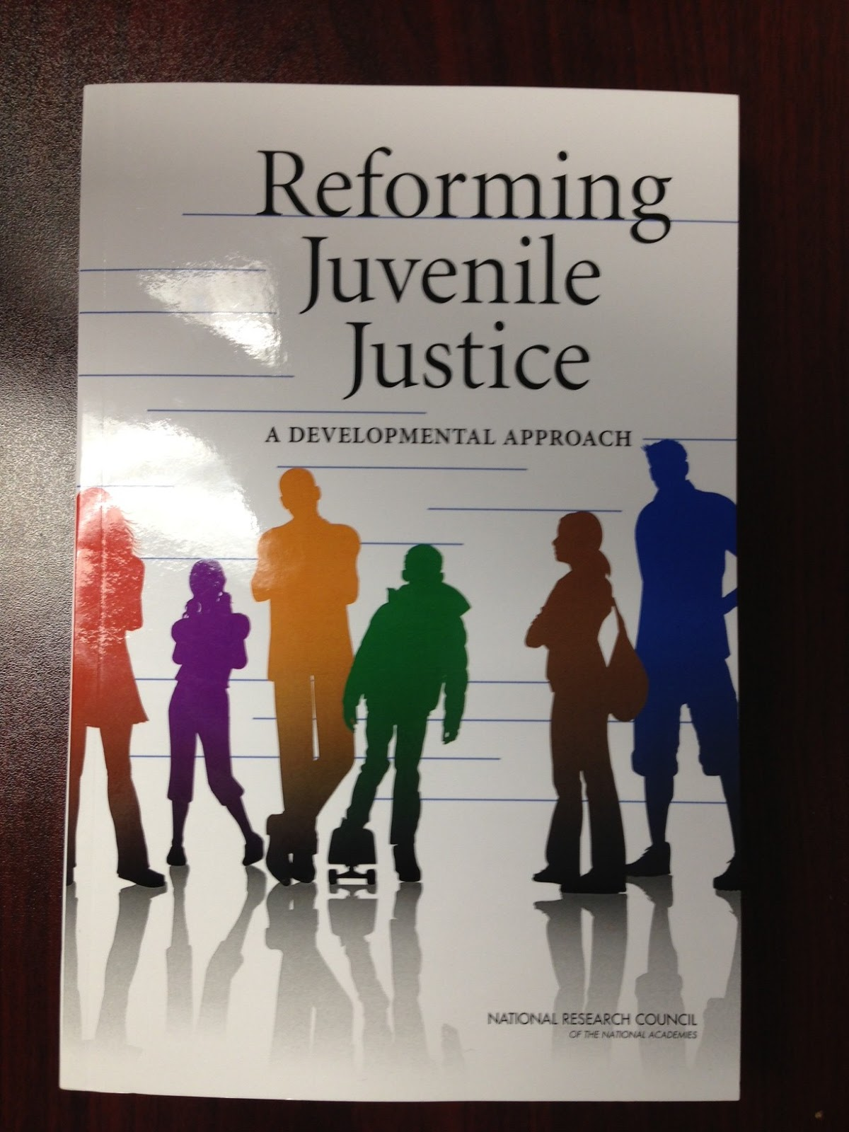 an overview of the issues regarding juvenile offenders and juvenile justice Volume iv • number 2 juvenile justice  ing authorities on juvenile justice and related youth issues these ex-  juvenile offenders has been improved juvenile.