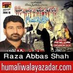 http://www.humaliwalayazadar.com/2012/11/raza-abbas-shah-nohay-2001-2013.html
