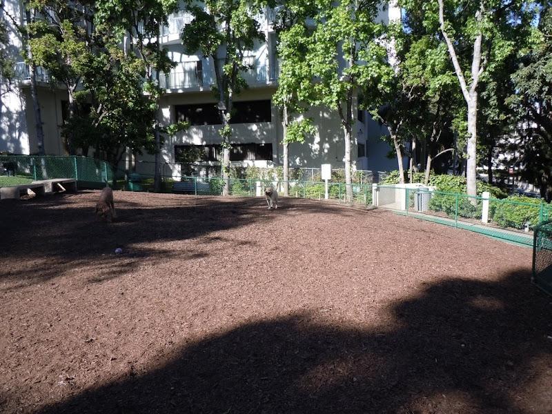 William S Hart Dog Park WEHO