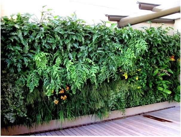 Como fazer seu jardim vertical