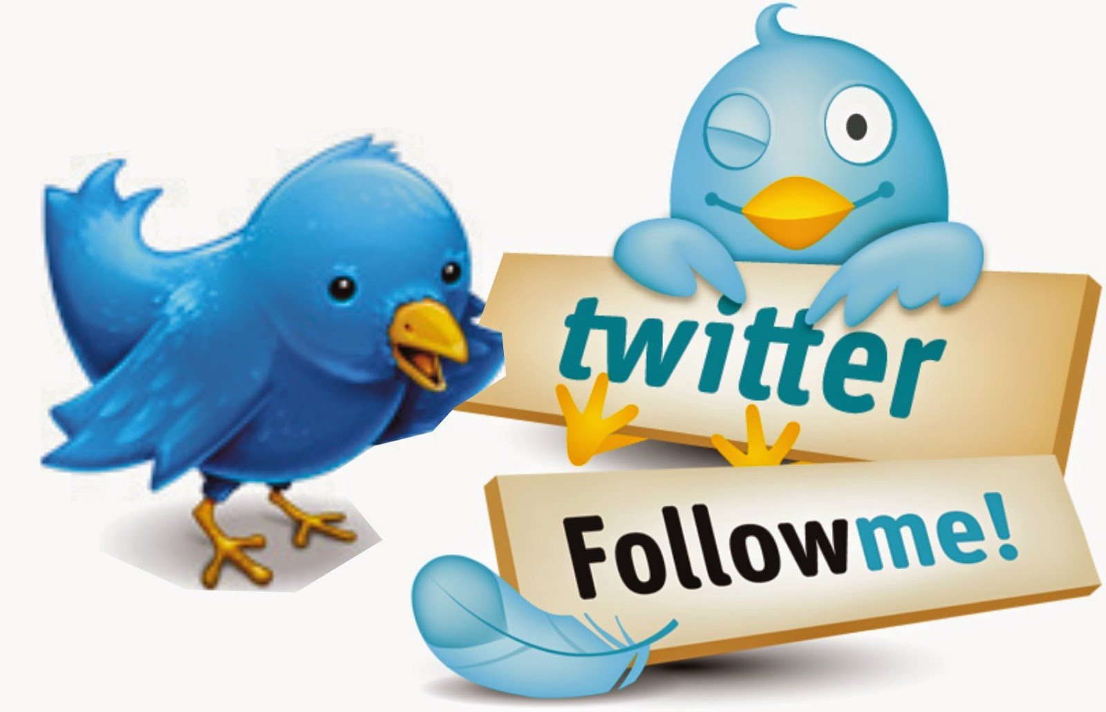 Ganar seguidores twitter