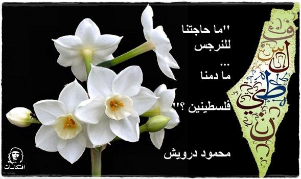 احلى ماكتب محمود درويش ( 35 مقطع - 21)