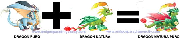 como sacar el dragon natura puro en dragon city