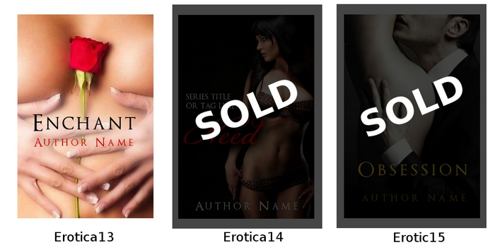 predesign book cover erotica ebook premade