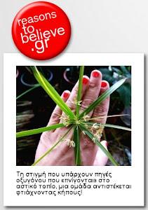 """Το """"Φτιάχνω Κήπο"""" είναι Reason to believe!"""