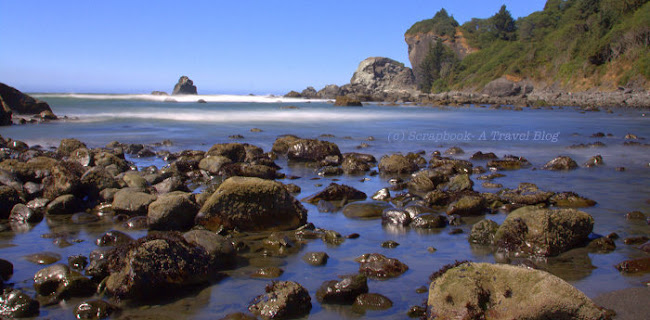 Beach at Redwood National Park