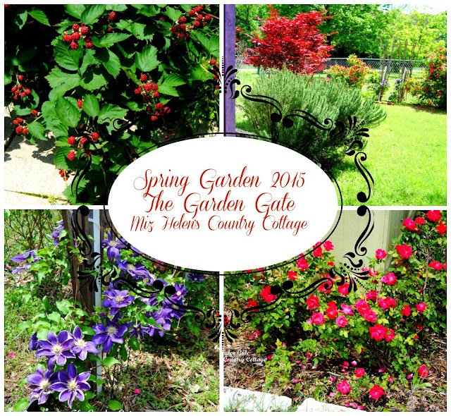 The Garden Gate, Spring 2015, at Miz Helen's Country Cottage