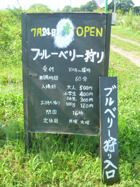 Backyard Farming Guide :  JAPAN! Kitchen Farm Yard  Farm Restaurant  BlueberryPicking  Yuni