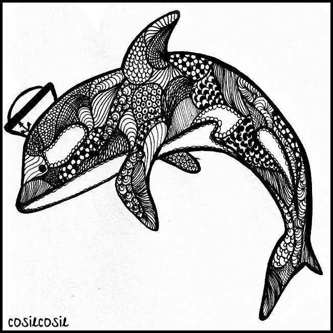 dolphin_cosiecosie