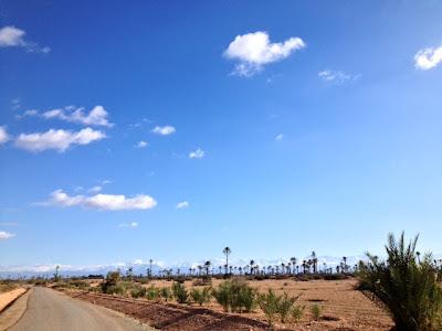 Panorama sur l'Atlas enneigé en hiver 2012 depuis la palmeraie de Marrakech