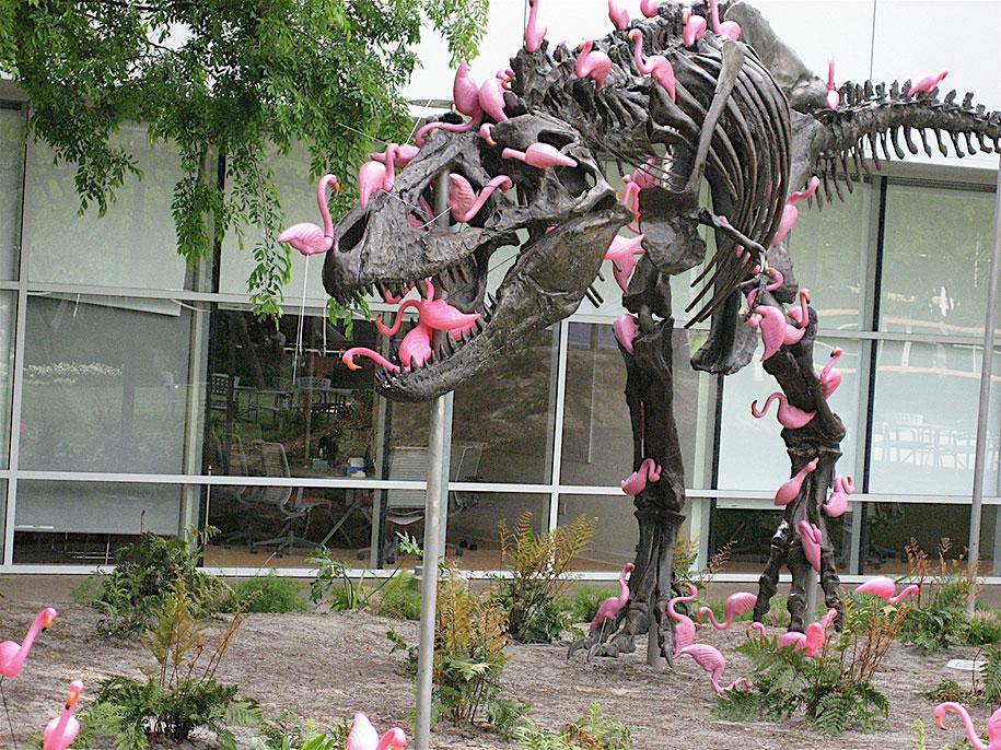 Imagen del día: Tiranosaurio atacado por Flamingos