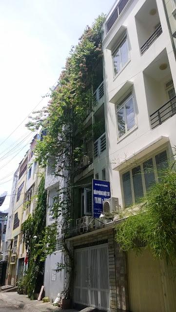 Giải pháp trồng cây xanh chống nắng cho nhà phố
