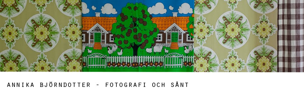Fotograf Annika Björndotter