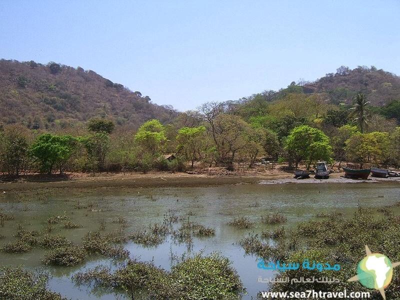 جزيرة إليفانتا في الهند