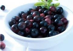 Diet Eat Fast With Acai Berry Fruit