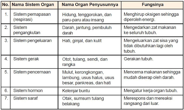 Pengertian Sistem Organ dan Macam-macam Sistem Organ pada Manusia, Hewan dan Tumbuhan